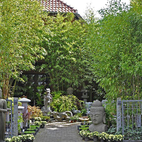 Japanischer garten bambus malerei methodepilates for Garten bambus